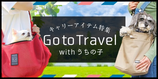 carry-
