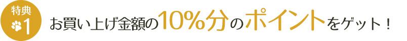 お買い上げ金額の10%分のポイントをゲット!